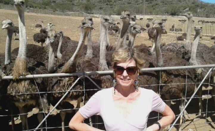 ostrick